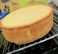 бисквит в хлебопечке рецепты с фото